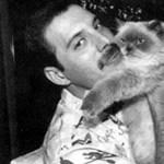 Filmet forgatnak Freddie Mercury életéről