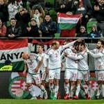 Kísérletnek szánja a fehéroroszok elleni meccset Leekens