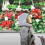 1,5 milliárd forintos pályázatot írt ki a NASA, hogy legyen mit enniük a Marsra tartó űrhajósoknak