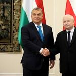 Lengyelország ma ünnepélyesen megismerkedik a vasárnapi boltzár fogalmával
