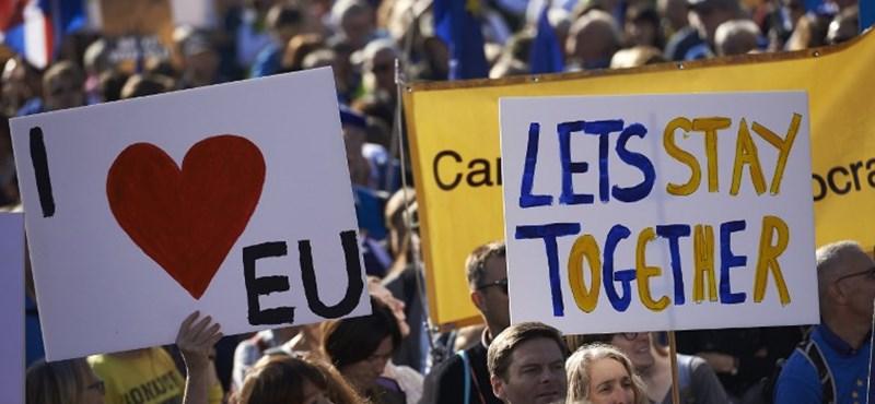 Az Európai Bíróság előtt a Brexit ügye