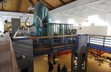 Budapest a Józsefvárosi Pályaudvar területére költöztetné a Természettudományi Múzeumot
