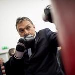 Orbán Viktor és a férfiasság