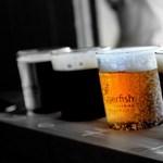 Mennyi ingyen sör jön ki a Budapest-Belgrád vasútvonal árából? Kiszámolták
