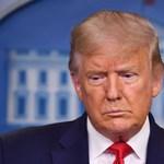 """Trump szerint """"békésnek látszanak"""" a fehérorosz tüntetések"""