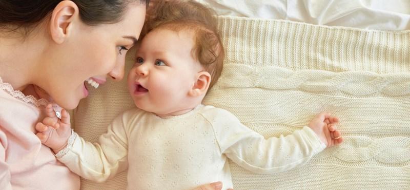 Az anyatigris születése