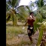 Így néz ki egy banánfa kivégzése puszta kézzel (videó)