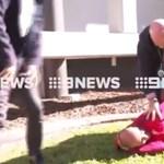 Élő adásban teperte le a menekülő magyart egy ausztrál rendőr