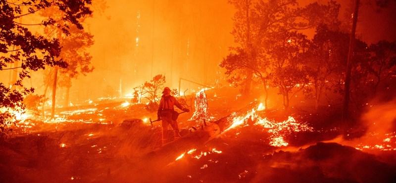 Több mint 1200 ember halhatott meg a kaliforniai erdőtüzek füstje miatt