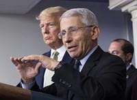 Trump járványügyi főtanácsadója: Év végére elkészülhet a koronavírus elleni védőoltás