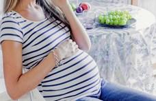 Mi mindent kérhet egy terhes nő a munkahelyétől?
