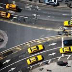 Fókuszpont: New York, egy madár szemszögéből