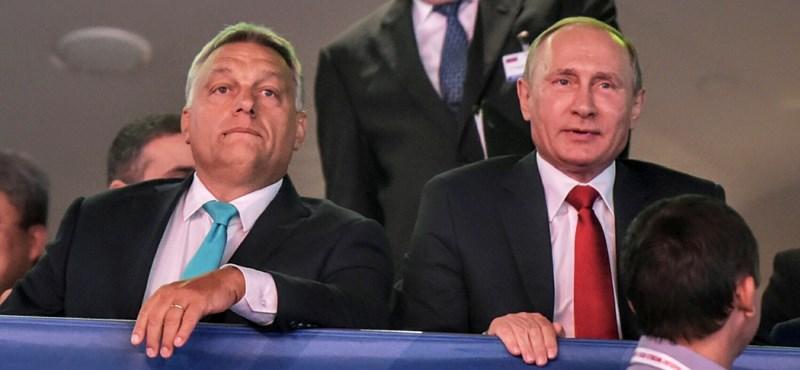 Kispályások a magyar focioligarchák Putyin barátai mellett