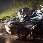 Négy fotó a pécsi halálos baleset helyszínéről