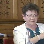 Ha arra számított, korlátlan enyhítés jön, téved – az operatív törzset faggatták a Parlamentben