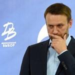 Putyin fő riválisa célba vette a Kreml-szóvivő dúsgazdag fiát
