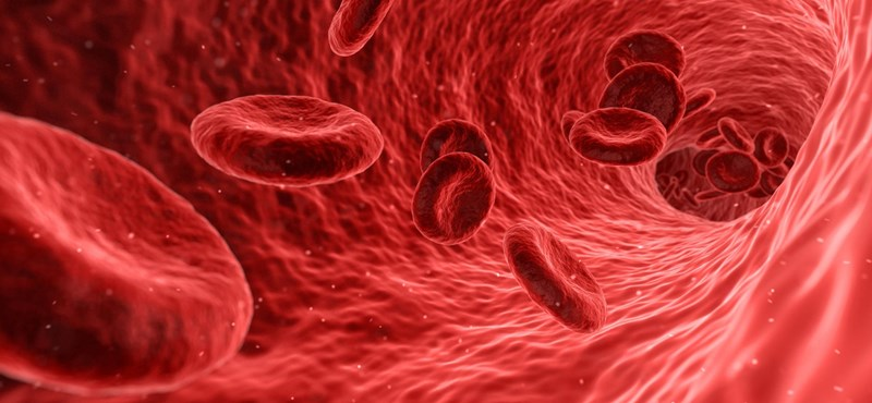 Koronavírus-fertőzésen átesett, gyógyult vérplazmadonorokat keresnek