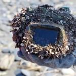 Csodásan vizsgázott egy vízhatlan tok, ha igaz ez a történet – fotók