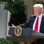 Donald Trump most jelentkezett be a Csupasz pisztoly főszereplőjének