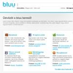 Ilyen az új magyar kereső, a Bluu