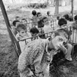 Kisebbre nőtt a Ceausescu rémuralma alatt felnövő állami gondozottak agya