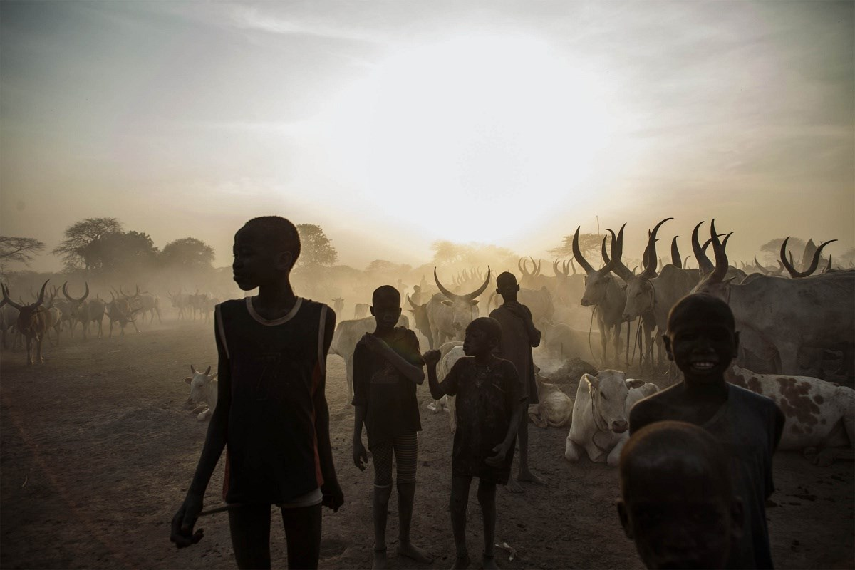 Keleti nyitás és kivégzett zsiráf a hét képein - Nagyítás-fotógaléria