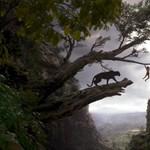 A dzsungel könyve-film elkápráztat, de hiányzik belőle a szív