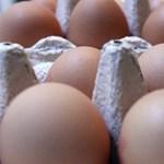 Na, kik miatt drágult ezer százalékkal a tojás?
