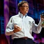 Szúnyogokat uszított a TED közönségére Bill Gates