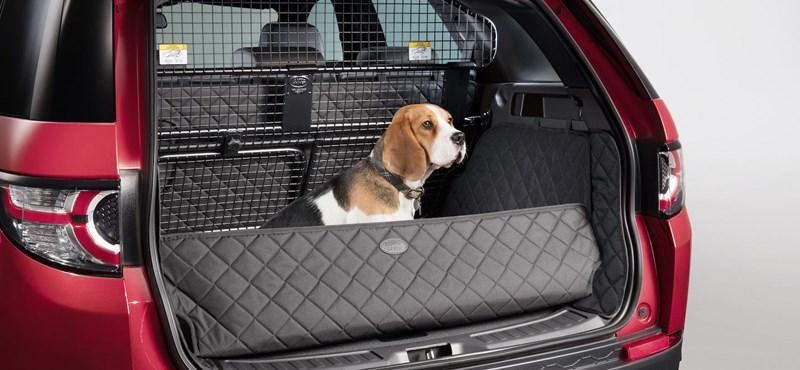 Kutyatálat és kutyazuhanyt is lehet már venni egy Land Roverhez