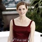 Emma Watson kétségbeesetten keresi a legszemélyesebb értéktárgyát