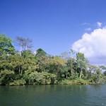 Hét fiatalt találtak holtan egy panamai tónál