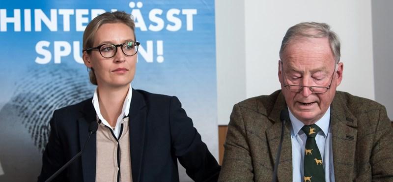AfD-elnök: Hitler csak egy madárszar a sikeres német történelmen