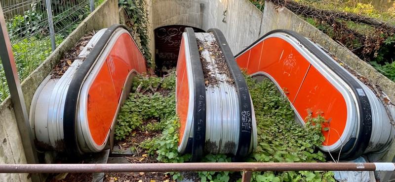 Rómában kivirágzott egy mozgólépcső, mintha egy film díszlete lenne