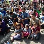 TGM: A menekültek éve
