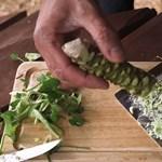 Ritka betegséget, megtört szívet okozott egy nőnél a wasabi