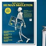 Kiadnak egy könyvet, amit 180 cm-es csontvázzá lehet hajtogatni – olló és ragasztó nélkül