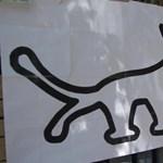 Passzivistákkal szeretne vidéken terjeszkedni a kutyapárt