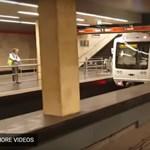 Kacsacsalád miatt nem jár a 2-es metró egy szakaszon