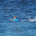 Összefogtak a cápák a floridai szörfösök ellen