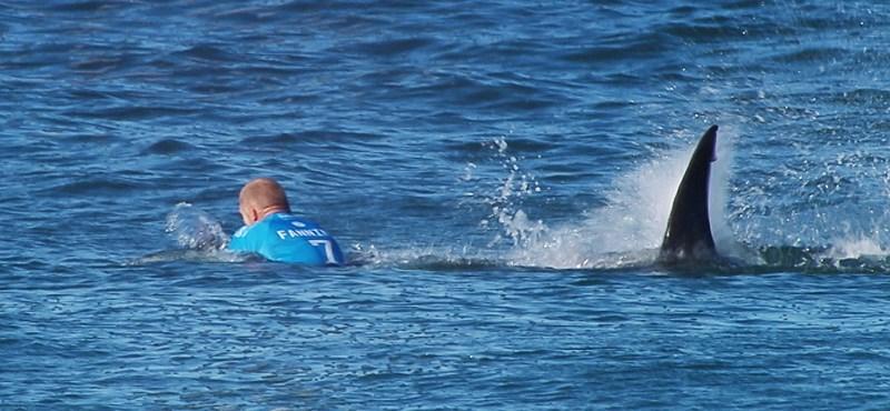Nyugdíjba megy a cápatámadást túlélő világbajnok szörfös