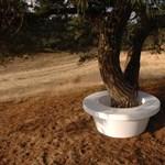 Jópofa kerti ötlet: mintha cserepes fáink lennének