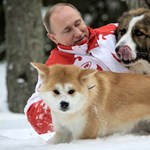 Másodjára már nem kellett Putyinnak a japánok kutyája