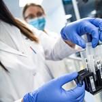 NVB: Nem lehet népszavazást tartani az ingyenes koronavírustesztről
