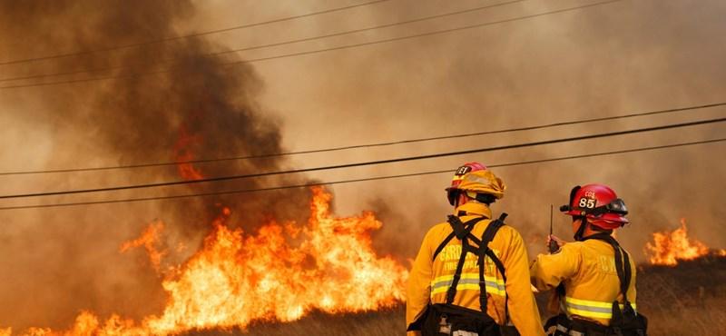 Negyvennél is több halottja van a kaliforniai tűzvésznek