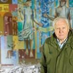 Elnémult David Attenborough Instagram-csatornája, és ez így is marad