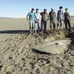 Kiszáradt a tó, előkerült az ötven éve eltűnt repülő a halottakkal együtt