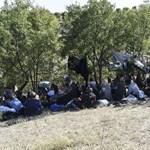 Éhségsztrájkba kezdtek a menekültek a görög-török határon