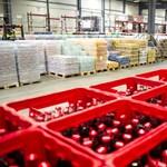 Mérnökhallgatókat vár a magyarországi Coca-Cola