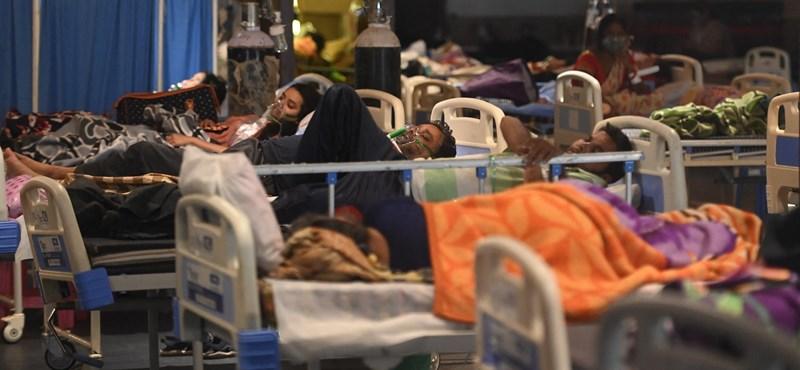 Rekordon a halálozások száma Indiában, de még mindig nincs országos karantén